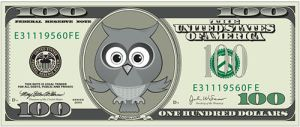 Owl Money 2